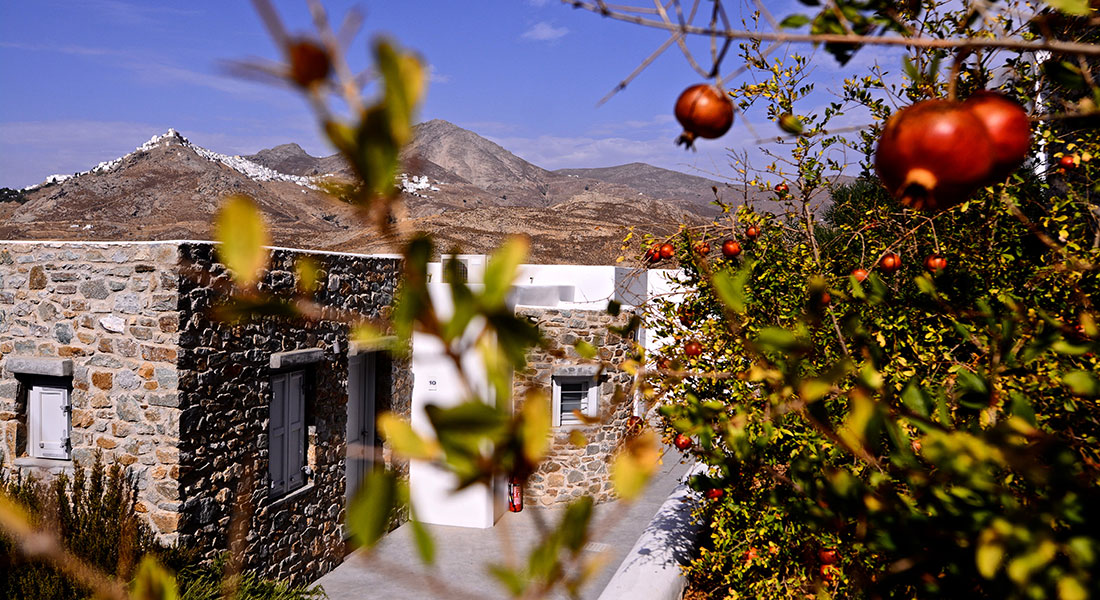 Hotel Rizes at Serifos